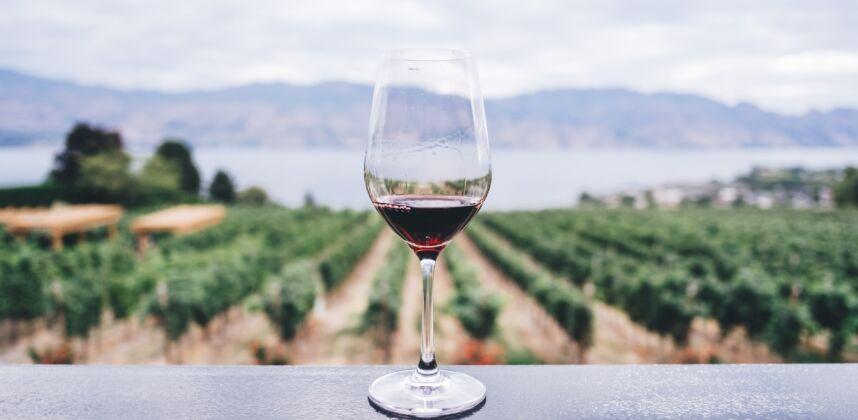 Екскурзия до Генгера и винарна Зеланос